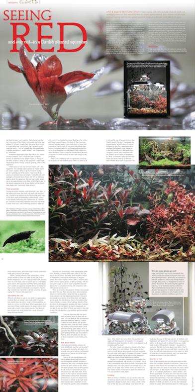 article-red-plants-amazonas-marie-sophie-germain