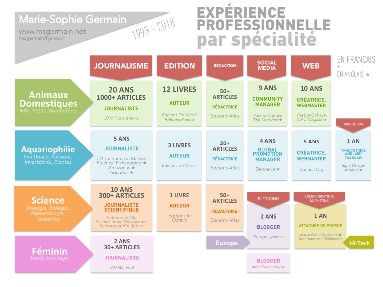 Work Experience Fields ExpertiseFR